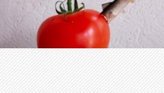 Les agriculteurs canadiens demandent de conclure un accord avec Bayer Monsanto