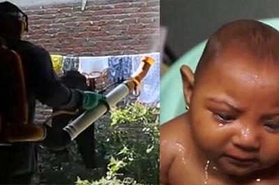 Les médecins désignent le larvicide de Monsanto comme une cause d ...