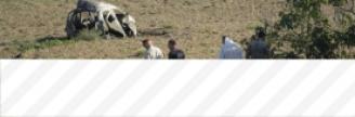 17.10.2017 - Panama Papers : une blogueuse maltaise à l'origine de révélations assassinée...
