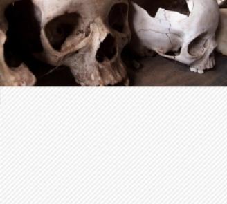 Statistiques, mensonges et vérité sur le génocide du Rwanda