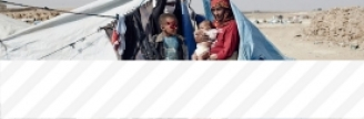 21.11.2017 - Les États-Unis augmentent leur aide au massacre saoudien au Yémen